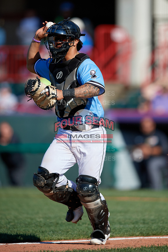 Erie SeaWolves catcher Chace Numata (25) during an Eastern League game against the Akron RubberDucks on June 2, 2019 at UPMC Park in Erie, Pennsylvania.  Erie defeated Akron 8-5 in eleven innings in the second game of a doubleheader.  (Mike Janes/Four Seam Images)