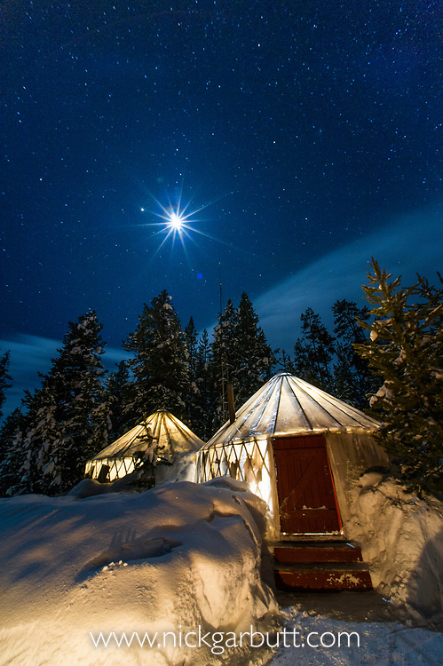 Yurt Camp under a star filled sky in the middle of the forest. Depp winter with outside temperature below -25C. Canyon, Yellowstone National Park, Wyoming, USA.