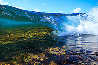 A colorful wave breaks over a shallow reef on the North Shore of O'ahu.