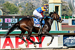 ARCADIA, CA  APRIL 3:  #3 Rock Your World, ridden by a celebrating Umberto Rispoli, wins the Santa Anita Derby (Grade l) on April 3, 2021 at Santa Anita Park, in Arcadia, CA.(Photo by Casey Pnillips/ Eclipse Sportswire/ CSM)