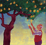 Illustrative concept of elderly man looking at coins growing on money tree representing retirement fund