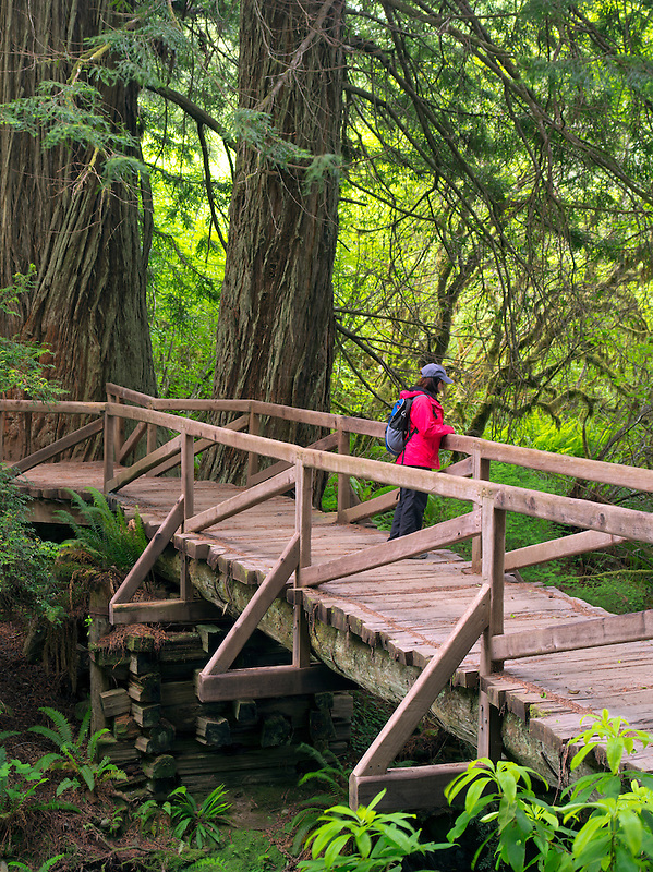 Bridge with hiker over creek in Redwood National and State Parks, California