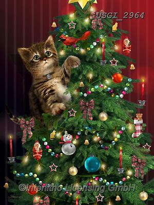 GIORDANO, CHRISTMAS ANIMALS, WEIHNACHTEN TIERE, NAVIDAD ANIMALES, paintings+++++,USGI2964,#xa#