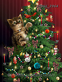 GIORDANO, CHRISTMAS ANIMALS, WEIHNACHTEN TIERE, NAVIDAD ANIMALES, paintings+++++,USGI2964,#xa#
