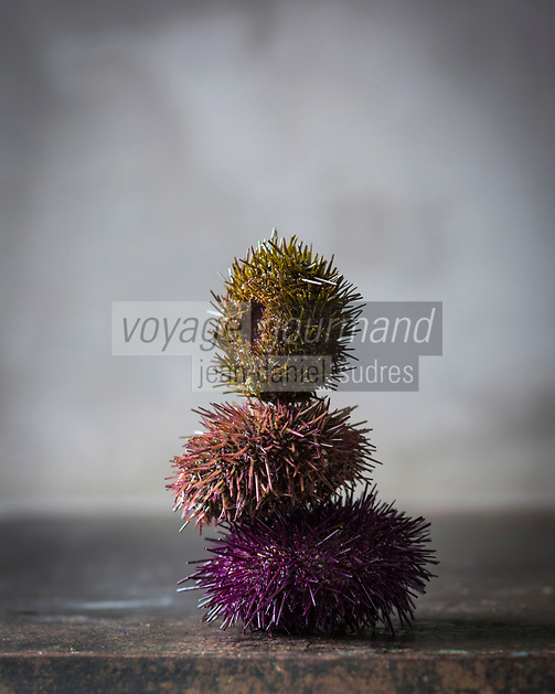 Gastronomie: Oursins //  Gastronomy: Sea urchins - Stylisme : Valérie LHOMME