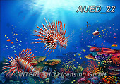 Carlie, REALISTIC ANIMALS, REALISTISCHE TIERE, ANIMALES REALISTICOS, paintings+++++Ocean-Wonderland,AUED22,#A#, EVERYDAY