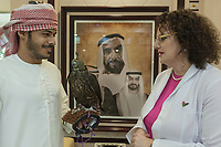 "United Arab Emirates (UAE). Abu Dhabi Falcon Hospital. Waiting room. Dr. med. vet. Margit Gabriele Muller (MRCVS) is the executive director of the falcon's hospital. Originally from Germany, the 49-year-old woman talks to an Emirati man who brings his falcon for a health checkup. On the wall, a painting with the portraits of His Highness Sheikh Zayed bin Sultan Al Nahyan (6 May 1918 – 2 November 2004) who was the ruler of Abu Dhabi for more than 30 years. He was the founding father and the principal driving force behind the formation of the United Arab Emirates, becoming the Union's first President, a post which he held for a period of almost 33 years (1971 until his death in 2004). He is popularly referred to in the UAE as the Father of the Nation. And on his  right, Sheikh Mohammed bin Zayed Al Nahyan (born 11 March 1961), colloquially known by his initials as MbZ, who is the Crown Prince of the Emirate of Abu Dhabi and Deputy Supreme Commander of the United Arab Emirates Armed Forces. The hospital is considered the leading center in the world for falcon medical care. It is equipped with everything a hospital requires for treating humans, except that the patients have wings. Falcons are birds of prey in the genus Falco, which includes about 40 species. Adult falcons have thin, tapered wings, which enable them to fly at high speed and change direction rapidly. Additionally, they have keen eyesight for detecting food at a distance or during flight, strong feet equipped with talons for grasping or killing prey, and powerful, curved beaks for tearing flesh. Falcons kill with their beaks, using a ""tooth"" on the side of their beaks. The United Arab Emirates (UAE) is a country in Western Asia at the northeast end of the Arabian Peninsula. 19.02.2020  © 2020 Didier Ruef"