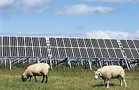 GERMANY Eon Solar Park at North sea island Pellworm / Deutschland Pellworm, Solar Kraftwerk der Eon AG