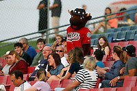 High Desert Mavericks mascot Wooly Bully entertains the fans during a game between the High Desert Mavericks and the Modesto Nuts at Stater Bros. Stadium on June 29, 2013 in Adelanto, California. Modesto defeated High Desert, 7-2. (Larry Goren/Four Seam Images)