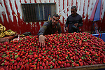 A Palestinian vendor sells strawberries during Muslim holy month of Ramadan, in Khan Younis in the southern Gaza Strip on April 22, 2021 amid the coronavirus disease (COVID-19) outbreak. Palestinians welcomed the Muslim fasting month of Ramadan under the shadow of economic difficulties caused by the Israeli blockade and the coronavirus pandemic. Nineteen people have died of the coronavirus disease in Palestine in the last 24 hours and 1652 new cases were recorded, according to the daily report on the disease. Health Minister Mai Alkaila said 11 of the dead and 1179 of the new cases were in the Gaza Strip. Photo by Ashraf Amra