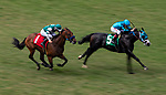 SEPT 01: Encoder with Flavien Prat (1) overtakes Billy Batts and Drayden Van Dyke to win the Del Mar Juvenile Turf at Del Mar Thoroughbred Clubb in Del Mar, California on September 01, 2019. Evers/Eclipse Sportswire/CSM