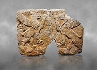 Hittite monumental relief sculpted orthostat stone panel Orthostats of a Procession. Limestone, Karkamıs, (Kargamıs), Carchemish (Karkemish), 900 700 BC. Griffin. Anatolian Civilisations Museum. Ankara. Bird - headed lions standing opposite on their hind legs (griffin). It is symmetric. <br /> <br /> Against a grey art background.
