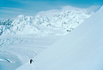 Alaska, Denali National Park, Back country skiers climbing the Southeast Buttress, Denali, Mount McKinley, Don Sheldon Amphitheater, Ruth Glacier in the background, MR, Polly Fabien, .