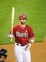 May 10, 2009; Phoenix, AZ, USA; Arizona Diamondbacks batter Ryan Roberts against the Washington Nationals at Chase Field. Mandatory Credit: Mark J. Rebilas-
