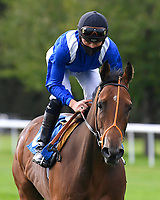 Mojandil ridden by Jason Watson goes down to the start of  The Draintech Tankers Nursery Stakes during Horse Racing at Salisbury Racecourse on 11th September 2020