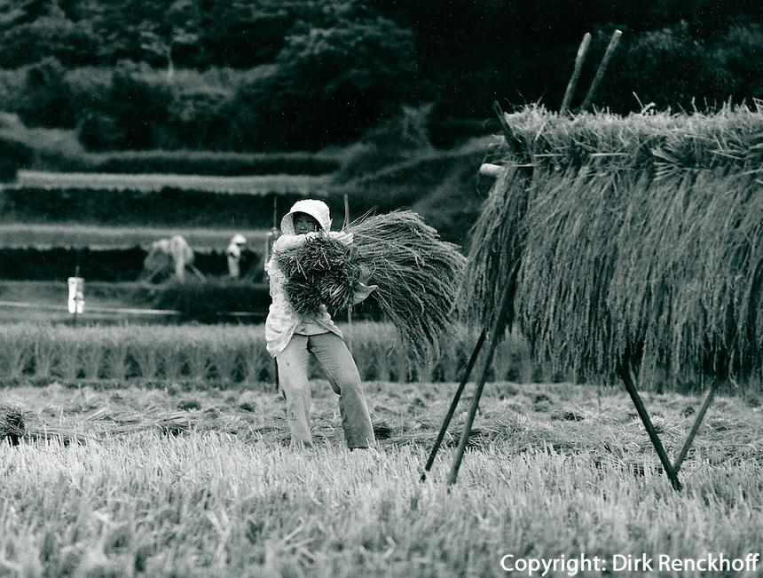 Vogelscheuche in Japan