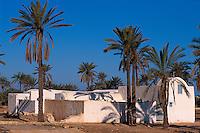 Bauernhaus (Menzel)  bei Midoun,  Djerba, Tunesien