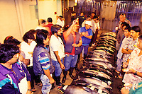 Daily fish auction in Honolulu