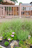 Deck and Miscanthus sinensis 'Morning Light' underplanted with hydrangea, foundation planting, with solar lighting, deck furniture, umbrella