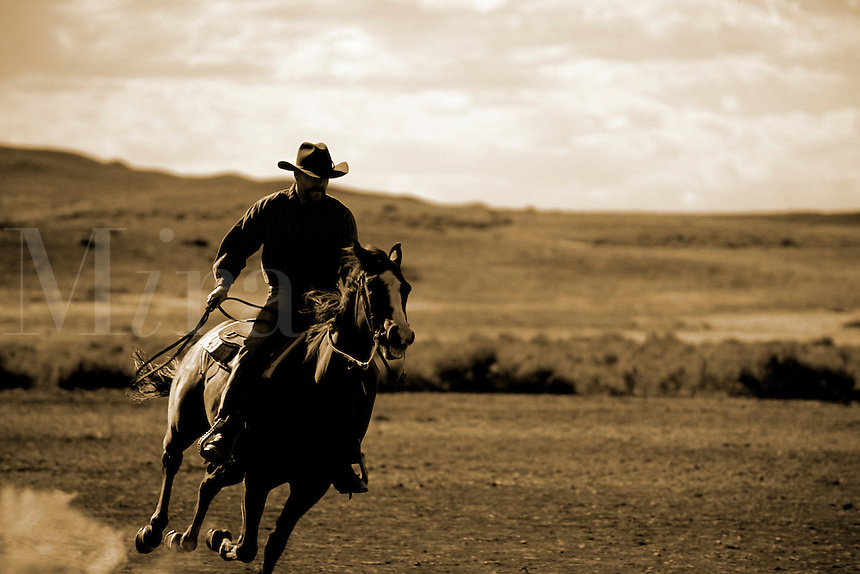 Abstract colors of cowboy riding horse on the dusty prairie of Billings Montan