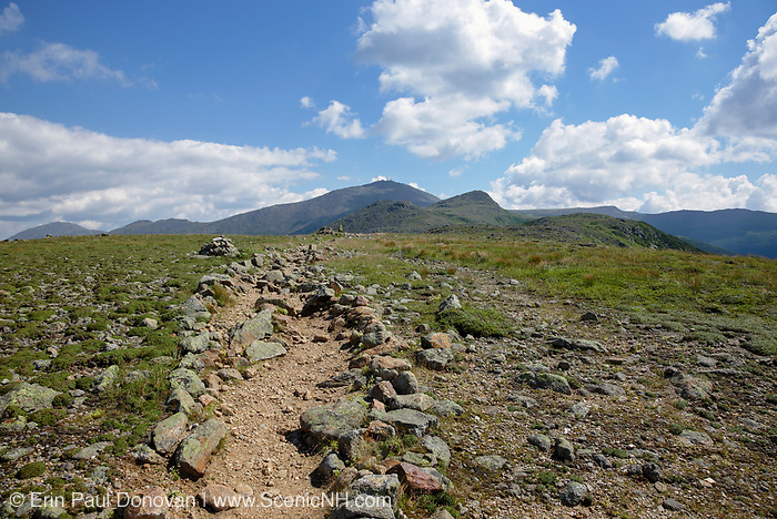 Mount Washington from the Appalachian Trail (Crawford Path) in the alpine zone of the Presidential Range of the New Hampshire White Mountains during the late months of summer.