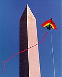 Smithsonian Kite Festival 24ft. Delta at Washington Monument.