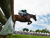 3rd Radnor Hunt Cup Timber Stakes - Pured It