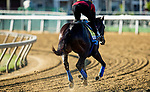 MAY13, 2021:  A view of the dermatitis on Kentucky Derby winner Medina Spirit's hip as he gallops with Humberto Gomez in preparation for the Preakness Stakes at  Pimlico Race Course in Baltimore, Maryland on May 13, 2021. EversEclipse Sportswire/CSM