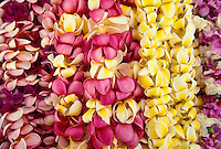 An outdoor display of pink and yellow plumeria leis on sale
