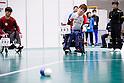 2019 Japan Para Boccia Championships