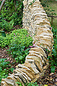 """Dry stone wall and woven hazel hurdle fence, Guy Petheram and Matthew Allan's """"Coppice"""" garden, RHS Hampton Court Flower Show 2009. Plants include red campion (Silene dioica) and sweet woodruff (Galium odoratum)."""