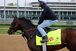 LOUISVILLE, KY - APRIL 20: My Man Sam (Trappe Shot x Lauren Byrd, by Arch) leaves the track after exercising at Churchill Downs, Louisville KY. Owner Sheep Pond Partners, Newport Stables LLC, Jay W. Bligh. Trainer Chad C. Brown. (Photo by Mary M. Meek/Eclipse Sportswire/Getty Images)
