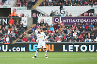 Leon Britton of Swansea City in front of a LETOU advert during the Premier League match between Swansea City and Huddersfield Town at The Liberty Stadium, Swansea, Wales, UK. Saturday 16 October 2017