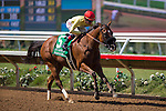 DEL MAR,CA-AUGUST 27: Masochistic,ridden by Tyler Baze,wins the Pat O'Brien Stakes at Del Mar Race Track on August 27,2016 in Del Mar,California (Photo by Kaz Ishida/Eclipse Sportswire/Getty Images)