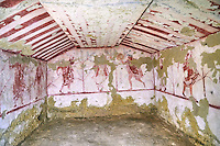 "Underground Etruscan tomb Known as ""Tomba Massimo Pallottino no 3713"". A single chamber with double sloping ceiling decorated. On the back wall are a painted dancing harpist, and couples dancing holding dinking cups.  Circa 580 BC. Excavated 1962, Etruscan Necropolis of Monterozzi, Monte del Calvario, Tarquinia, Italy. A UNESCO World Heritage Site."