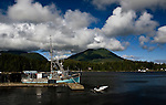 Ucluelet, British Columbia lies at the south end of Canada's Pacific Rim National Park along the north shore of Barkley Sound.  The harbor is home to commercial and sport fishing fleets and a jump off point to Kayak the Broken Island group.  Mount Frederick and Port Albion lie in the background.
