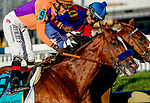 Jockeys share words after Swiss Skydiver #4, ridden by Robby Albarado, outdueled Authentic #9, ridden by John Velazquez, to win the Preakness Stakes during Preakness Stakes Day at Pimlico Race Course in Baltimore, Maryland. John Voorhees/Eclipse Sportswire/CSM