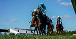 October 3, 2020: Catman #7, ridden by Daniel Centeno, wins the Laurel Futurity during Preakness Stakes Day at Pimlico Race Course in Baltimore, Maryland. Scott Serio/Eclipse Sportswire/CSM