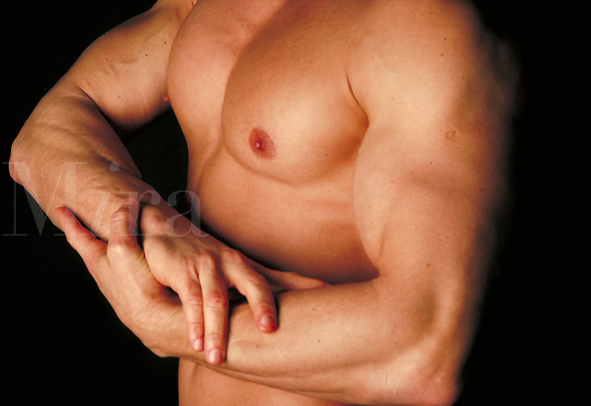 Male Torso with flexing bicep.