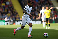 Luciano Narsingh of Swansea City in action during the Premier League match between Watford and Swansea City at Vicarage Road Stadium, Watford, England, UK. Saturday 15 April 2017