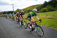 Shane Archbold (EvoPro Racing). Stage Four - Te Piki - The Climb. 2019 Grassroots Trust NZ Cycle Classic UCI 2.2 Tour from Cambridge, New Zealand on Saturday, 26 January 2019. Photo: Dave Lintott / lintottphoto.co.nz