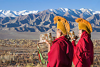 Buddhist monks blow conch shells in the morning on the roof of Thiksey Monastery to greet the day. Ladakh,  Jammu and Kashmir, India.