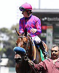 """Obviously with Joe Talamo aboard wins the G1 Breeder's Cup """"Win and You're Win"""" Shoemaker Mile Stakes at Betfair Hollywood Park in Inglewood, California on June 29, 2013. (Zoe Metz/ Eclipse Sprotswire)"""