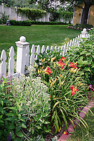 White picket fence with daylilies Hemerocallis, Sedum, lawn grass, garden, trees, climbing vines, house