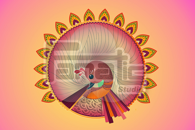 Illustration of peacock design over colored background