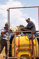 Vineyard workers on a tractor preparing for spraying. One man filling the tank with water. Kantina Miqesia or Medaur winery, Koplik. Albania, Balkan, Europe.