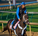 LOUISVILLE, KY - MAY 01: Take Charge Paula, trained by Kiaran McLaughlin, exercises in preparation for the Kentucky Oaks at Churchill Downs on May 1, 2018 in Louisville, Kentucky. (Photo by John Voorhees/Eclipse Sportswire/Getty Images)