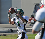 Football action. Wide receiver catches a perfectly thrown pass.