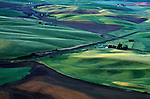 Farm with cultivated fields and fresh crops in rural Eastern Washington State USA
