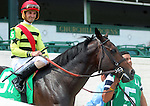 June 28, 2014:  Five year old horse Silver Max (Badge of Silver x Kissin Rene, by Kissin Kris) win the G2 Firecracker Stakes with jockey Robby Albarado (shown here in post parade.)  Owners Mark Bacon and Dana Wells, trainer Dale Romans.  ©Mary M. Meek/ESW/CSM